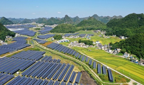 Photovoltaic and agriculture